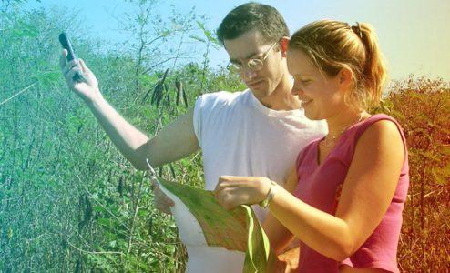 image of students examining crop